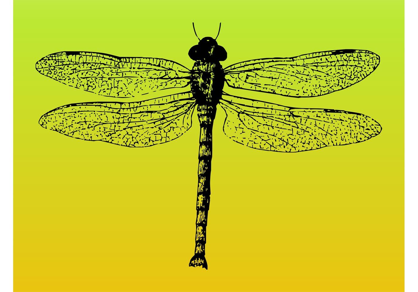 Dragonfly Vector - Download Free Vector Art, Stock ...
