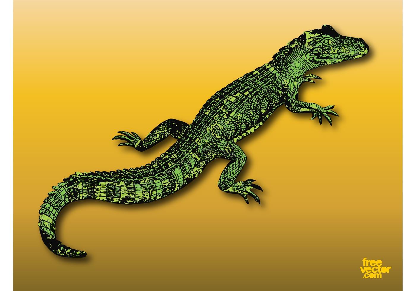 alligator download free vector art stock graphics amp images