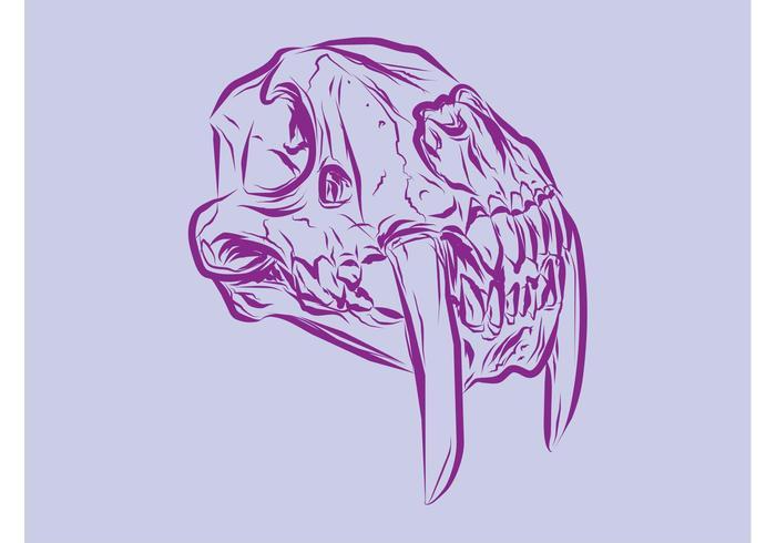 Animal Skull Vector