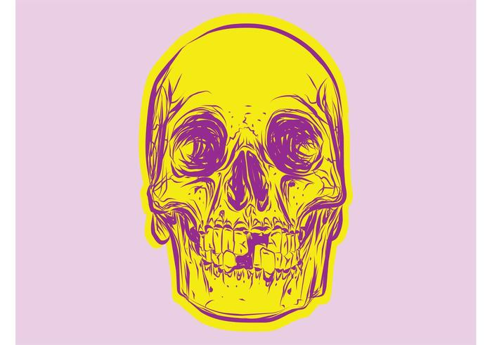 Colorful Skull