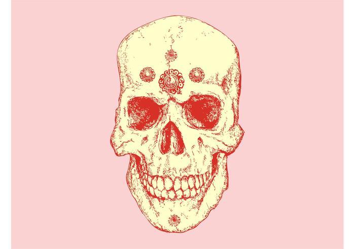Vintage Skull Vector