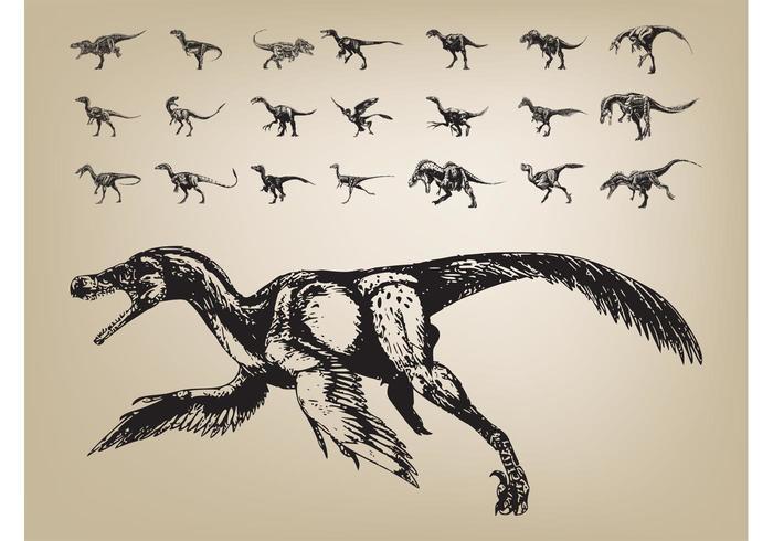 Los dinosaurios vectorial