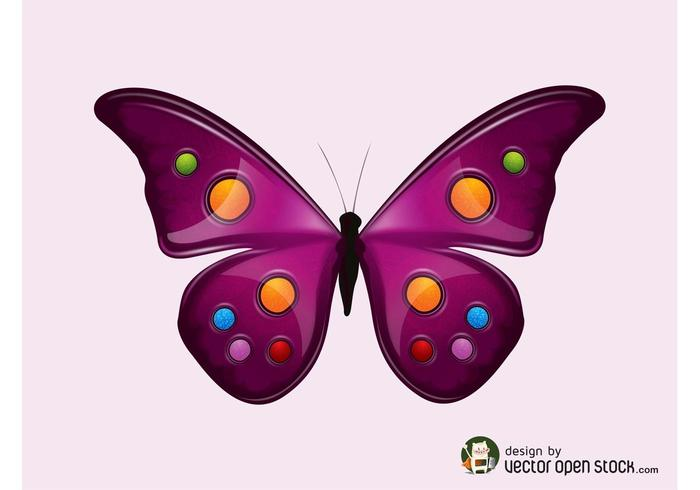 Vector Butterfly Graphics