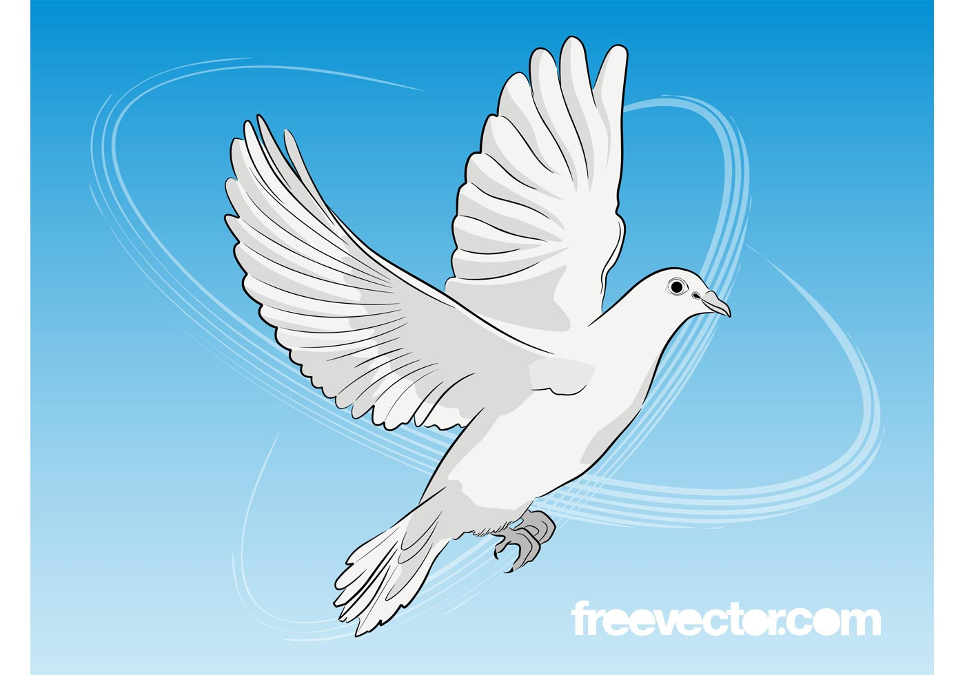Dove Vector Free Download