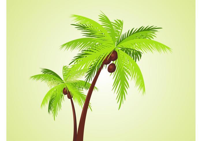Vector Palms