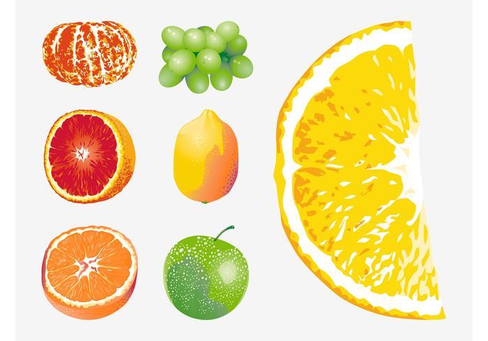 Vector Vruchten