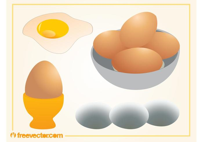 Eiervectoren