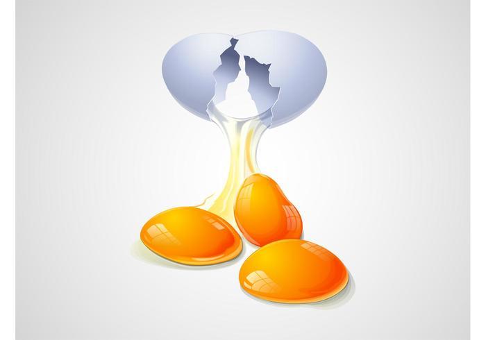 Vector de huevo agrietado