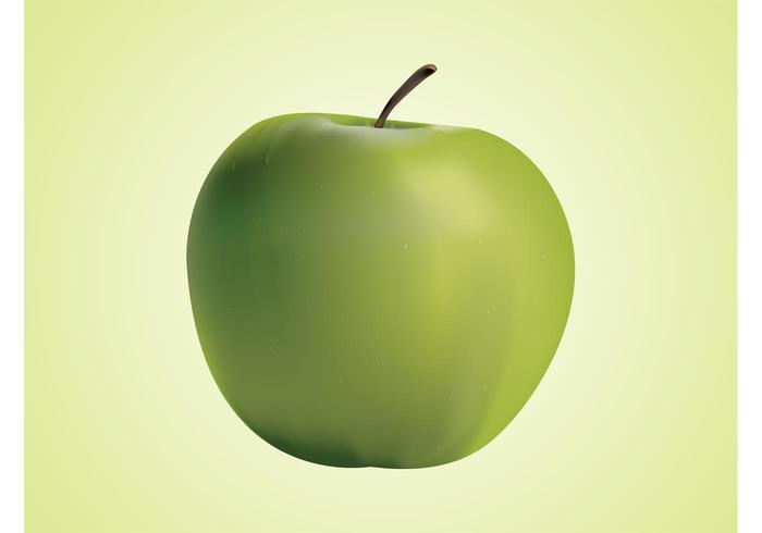 Realistic Vector Apple