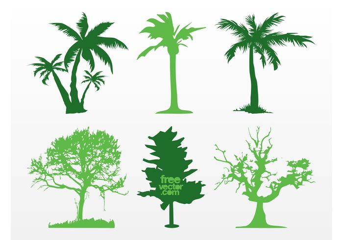 Exotic Trees Vectors