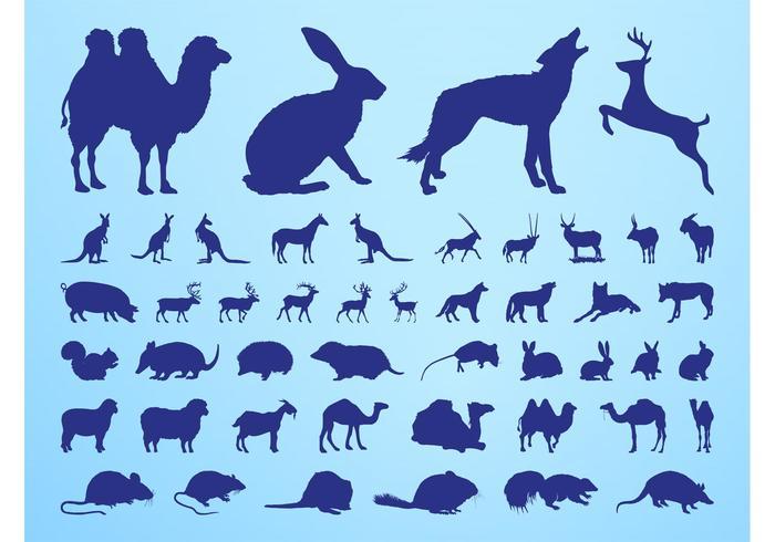 Silhuetter av djur