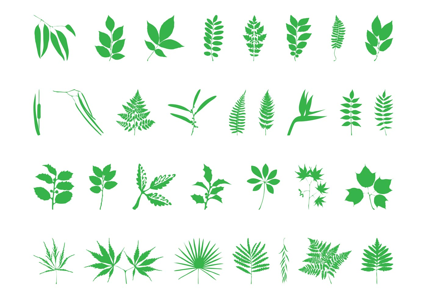 Unusual House Names Leaves And Branches Set Download Free Vector Art Stock