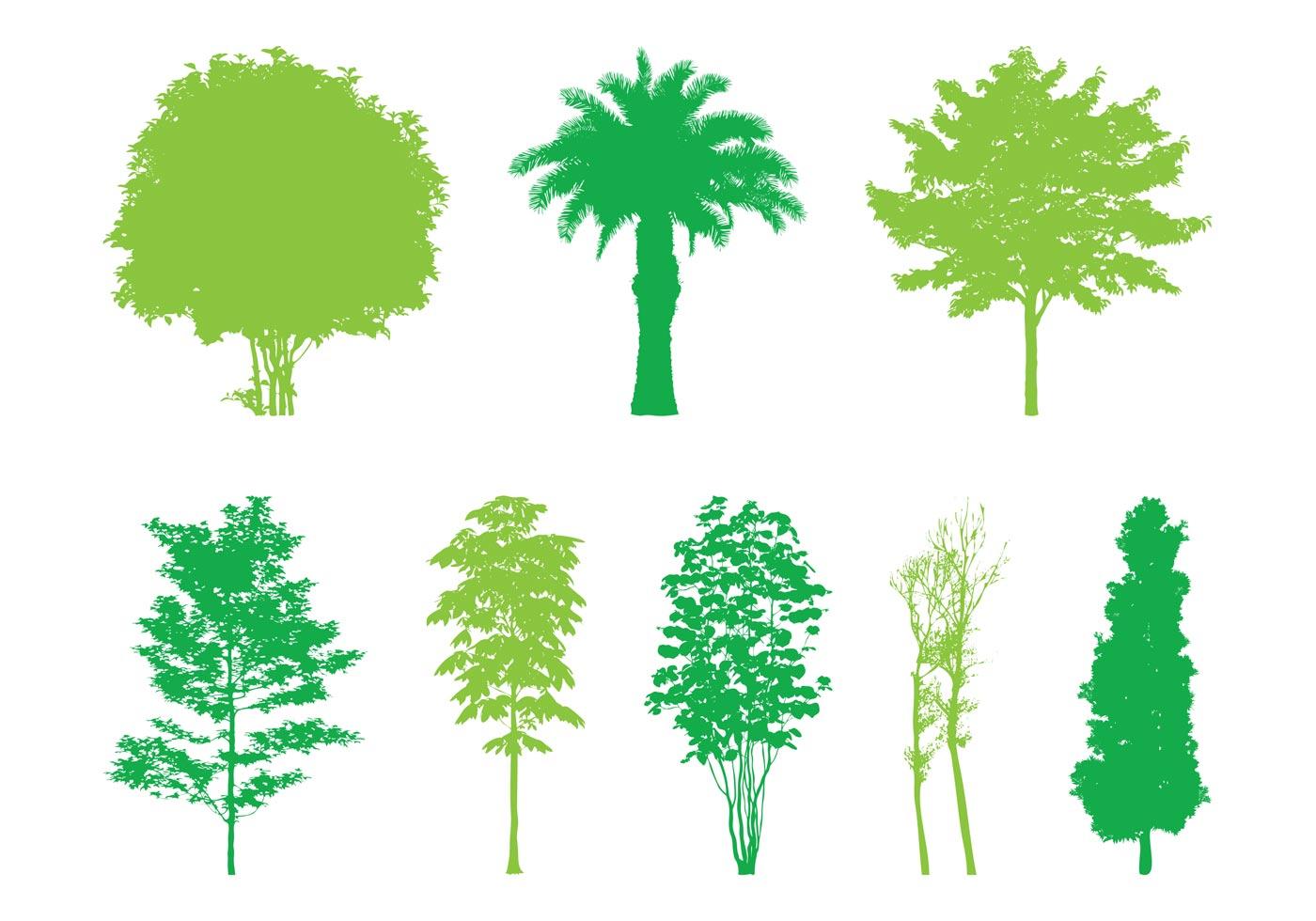 Vector Illustration Tree: Trees Silhouettes Graphics