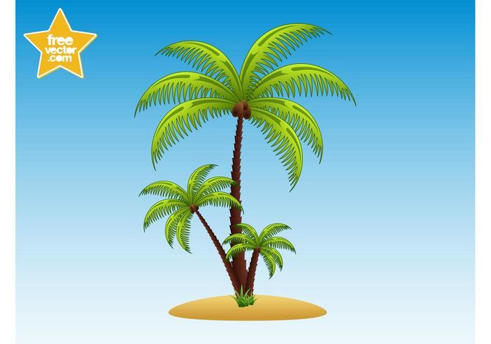 Palm Trees Illustration