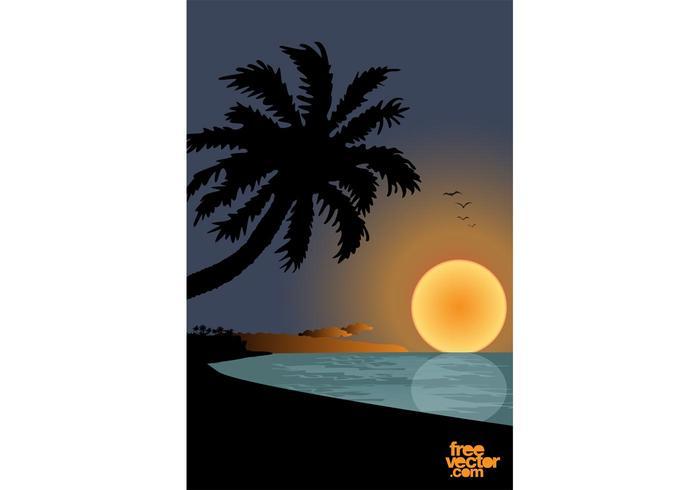 Sunset On Beach Graphics