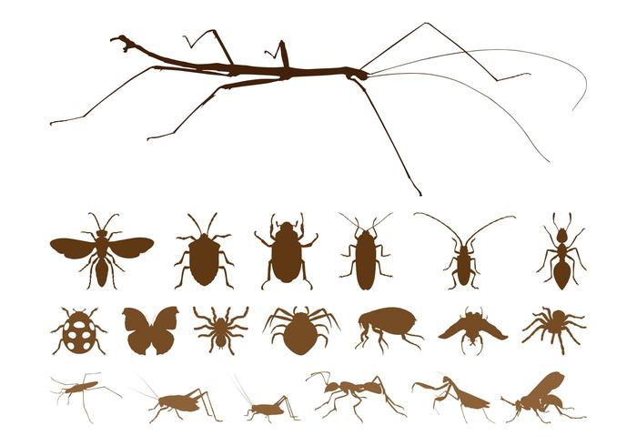Insect Silhouettes Set