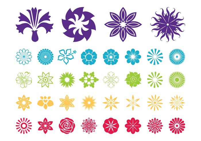 Flower Blossoms Vector Graphics
