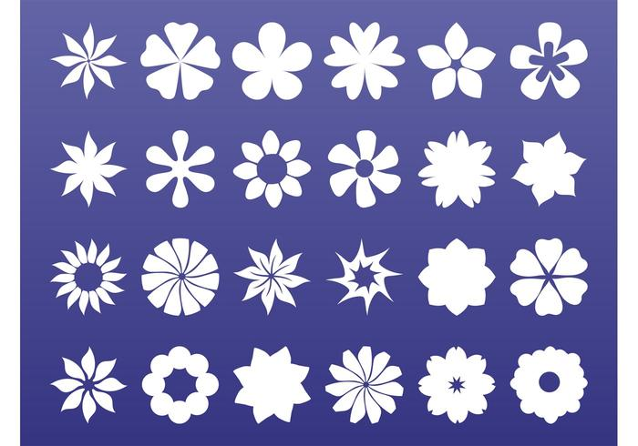 Floral Icons Graphics