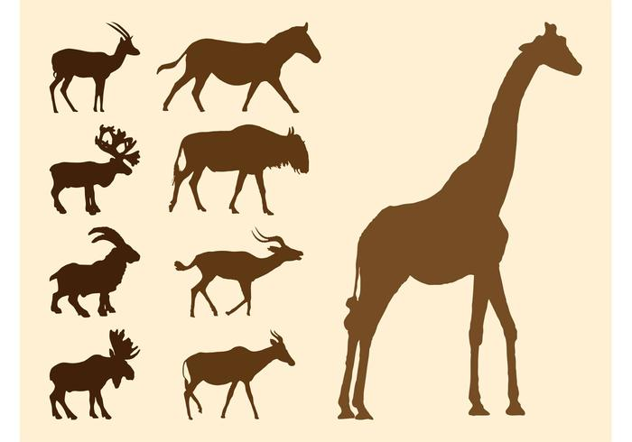 Wild Animals Silhouettes Set