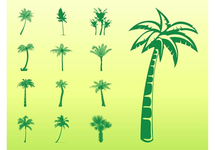 Palm Trees Silhouettes Set