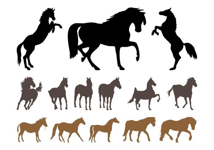 Horses Silhouette Set