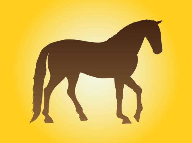 Horse Silhouette Image