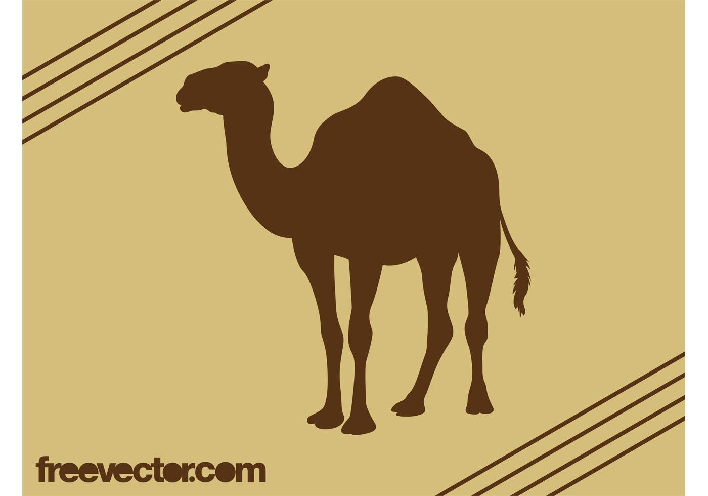 Camel Silhouette Vector - Download Free Vector Art, Stock ...