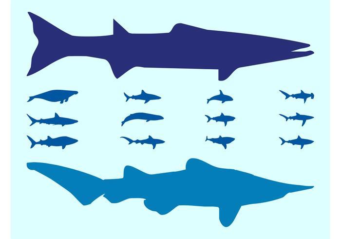 Sea Animals Silhouettes Vectors