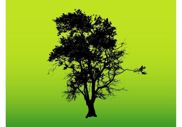 Tree Silhouette Graphics