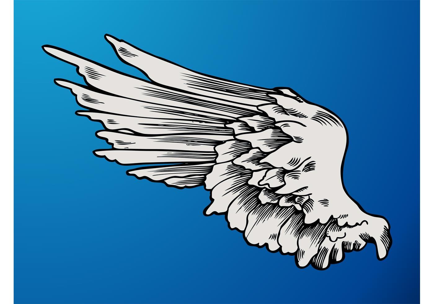 Angel Wing Graphics Download Free Vector Art Stock