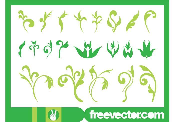 Floral Ornaments Graphics Set