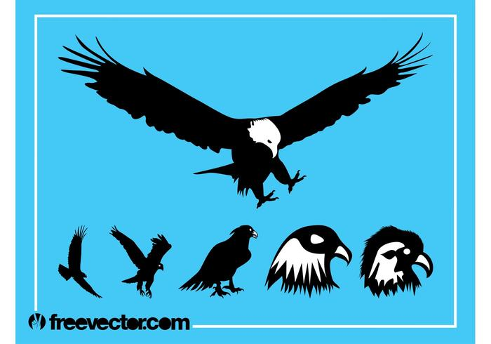 Eagles Silhouette Graphics