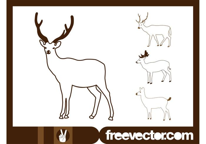 Deer Outlines Vector