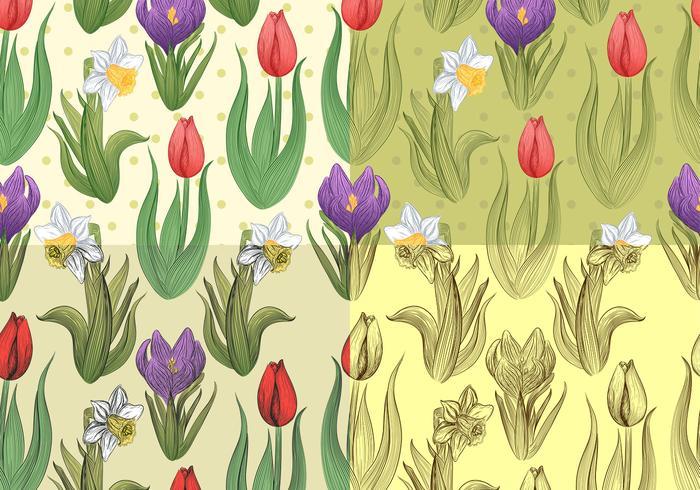Patterns vectoriels floraux et de jonquilles sans couture