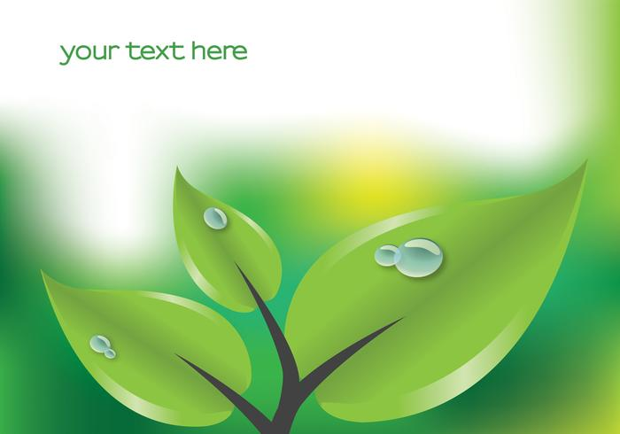 Green Leaf with Droplets Background Vector