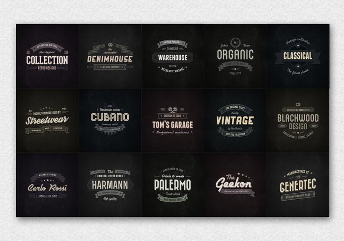 15 Distintivi d'epoca Logo Vettori