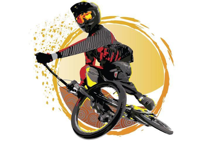 USA BMX Vector Sunset Turndown