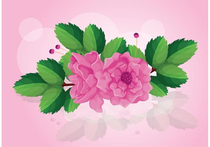 Rose Vector with Leaves