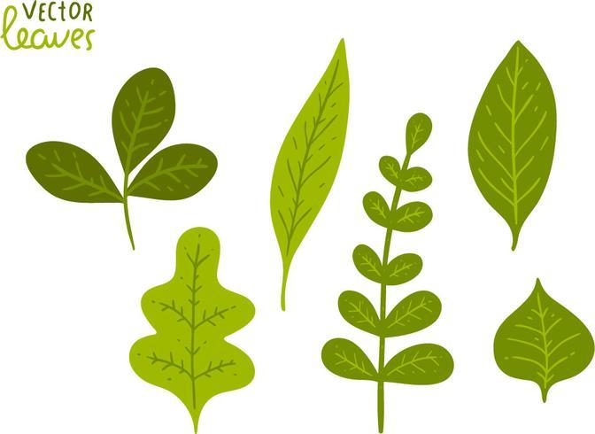 Libre de hojas de color verde Vector Pack