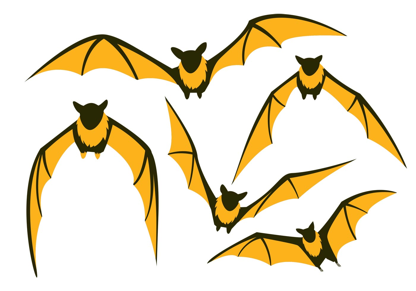 Vector Cartoon For Free Download About 5 514 Vector: Flying Fox Vector Bat Pack