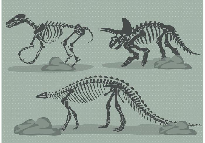 vettore di ossa di dinosauro