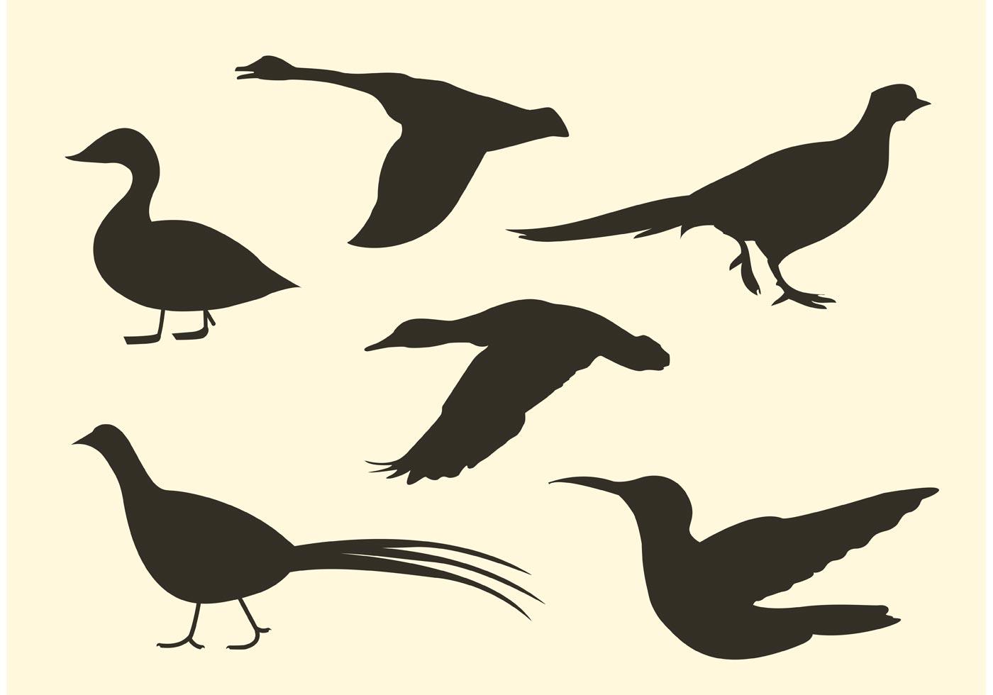 Free Bird Vector Silhouette Pack - Download Free Vectors, Clipart Graphics & Vector Art