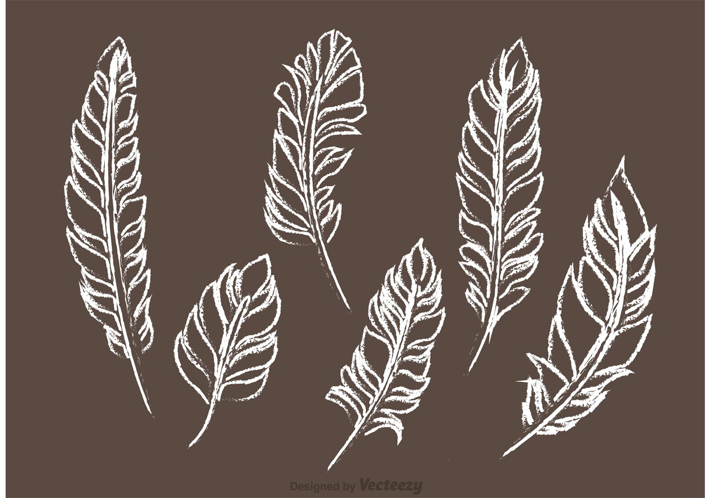 Chalk Drawn Feather Vector Pack Download Free Vector Art
