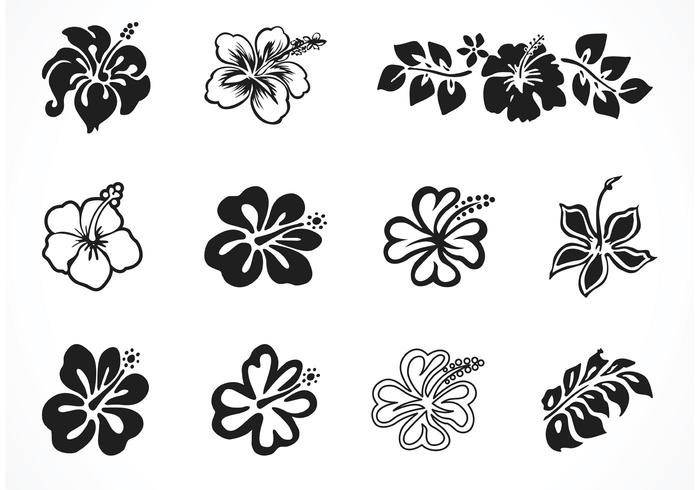 Free Vector Hibiscus Silhouettes