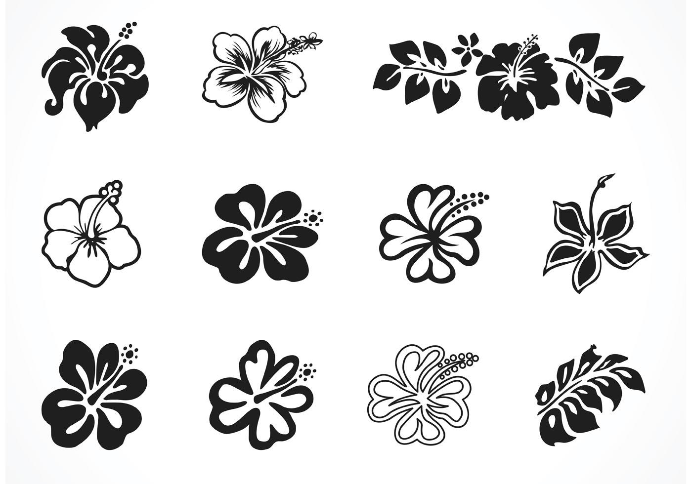 free vector graphic hibiscus - photo #3