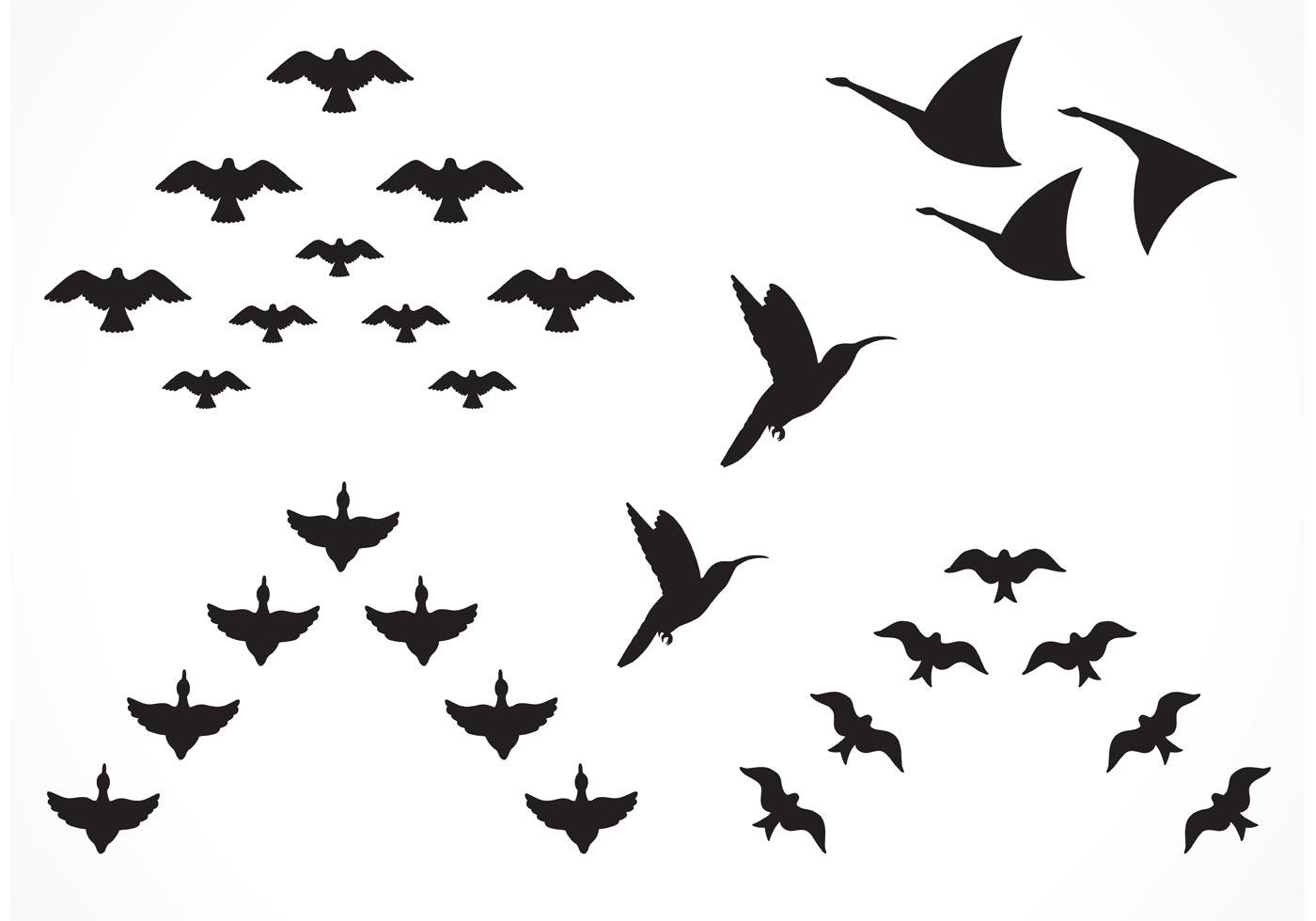 85595 Free Vector Flock Of Birds
