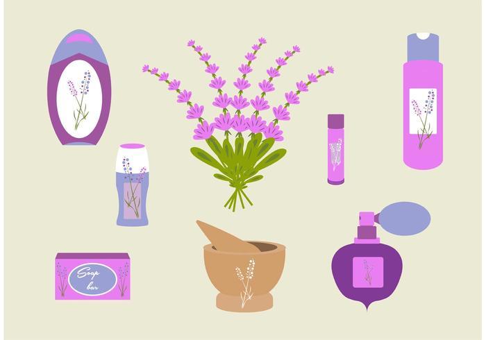 Flor de lavanda vector