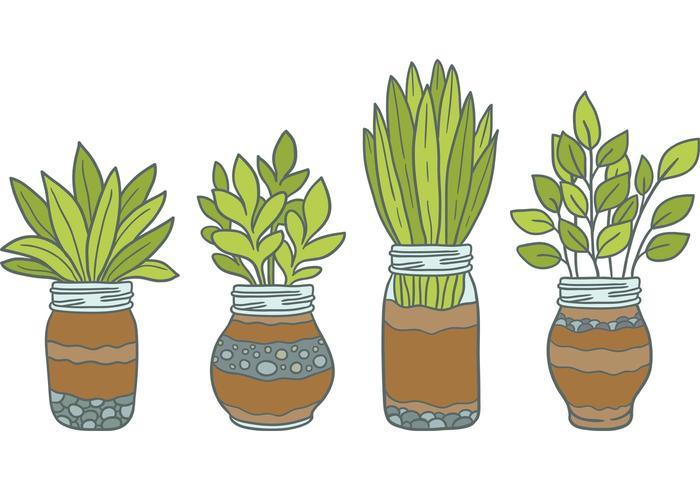 Libre Mason Jar Vectores