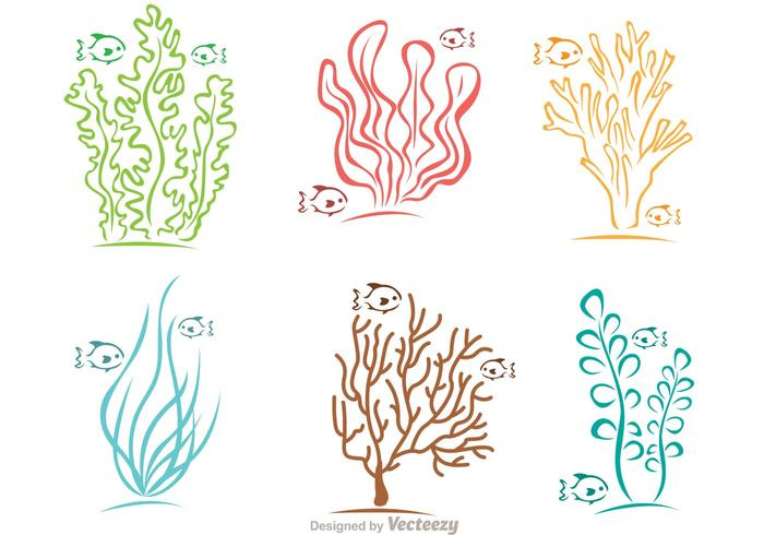 Colorful Coral Reef And Fish Vector