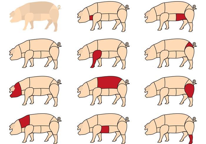 Cortes de carne de porco